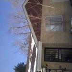 Denver-20120224-00511